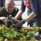 """Nationwide Healthcare Services launches """"Garden to Table"""" program at Brookside Healthcare and Rehabilitation Center"""